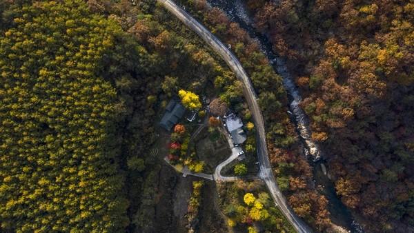 대규모 상용업 태양광발전 시설이 건립 될 갈목길 일대현장(2019년 부지조성 전)